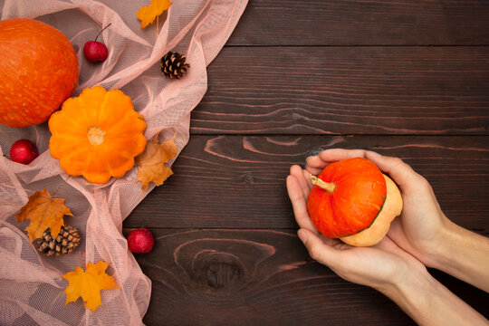 Autumn pumpkins background, pumpkin in hands  on wooden brown board.. Thanksgiving and Halloween template