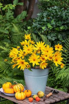 Sonnenblumenstrauß im vintage Eimer im Garten
