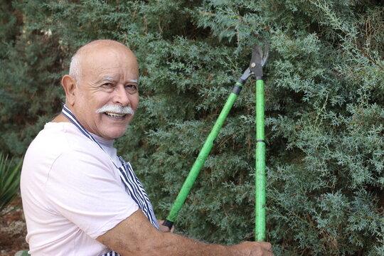 Senior man using garden scissors