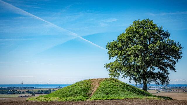 Ronneberga Backar Burial Mound