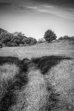 Skane Countryside Off Road Track