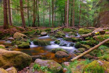 Górski strumień w Sudetach