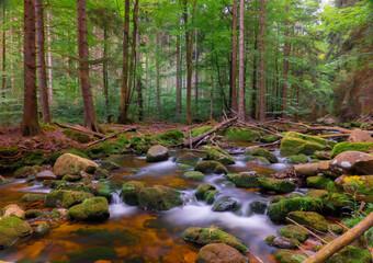 Górski potok w Sudetach