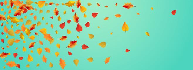 Fototapeta Autumnal Foliage Vector Blue Panoramic obraz