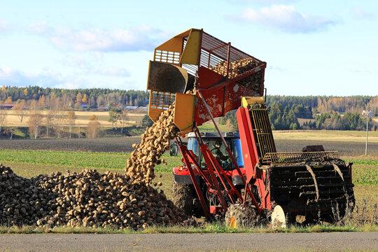 Farmer Unloads Sugar Beet Harvester Tank