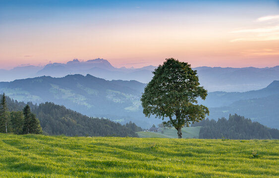 Mountain landscape at sunset in the Bregenz Forest mountains of Vorarlberg, Austria, with mount Saentis in Switzerland in the background