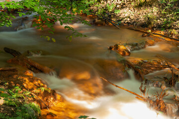 Spieniony, mały strumień płynący przez dziki las.