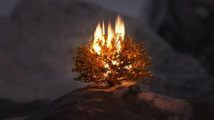 Burning Bush of Exodus, Bible imagery