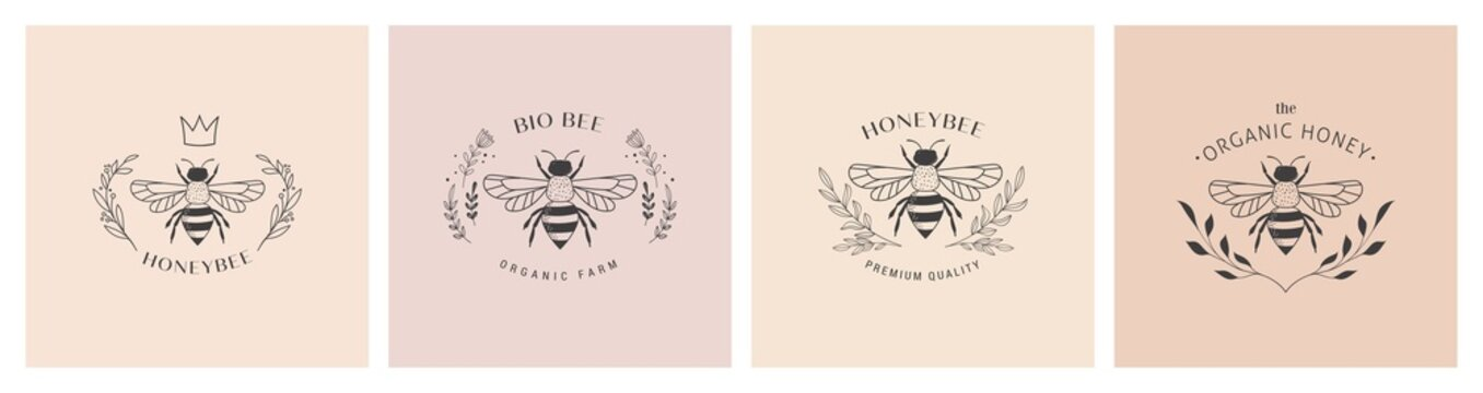 Collection of hand drawn bee, organic honey, logo, emblem, label and packaging design