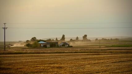 Fototapeta Wiejski krajobraz podczas żniw obraz