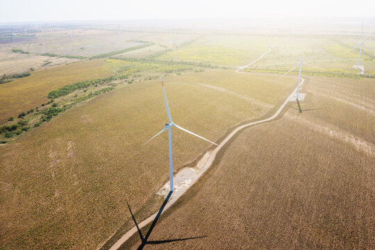 Wind turbines in green fields aerial view. Alternative electricity, sustainable resources, renewable energy concept.