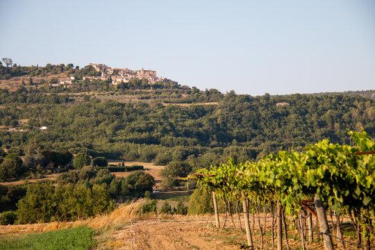 Vue sur les vignes en été , montagne de Luberon en arrière plan. Provence, France.