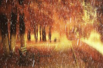 rain background autumn landscape park, abstract seasonal nobody weather october landscape