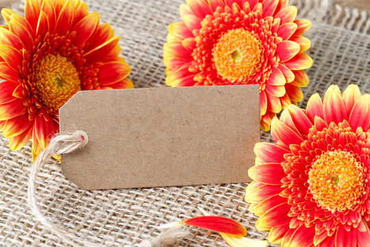 Brown paper tag with ribbon and red orange yellow gerbera daisy flowers on jute cloth background. Mockup vintage floral greeting card with copy space