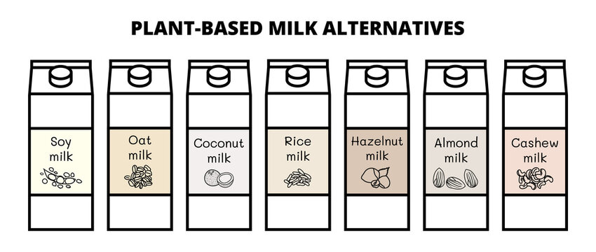 Vector set of vegan milk alternatives isolated on a white background. Plant-based non dairy soy, oat, coconut, rice, hazelnut, almond and cashew milk. Outline icons with hand-drawn illustrations.