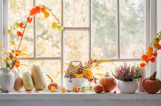 autumn  natural decor with pumpkins  and rowan berries on white background