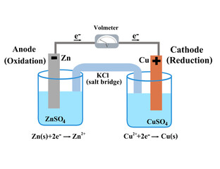 Fototapeta Voltaic galvanic cell or daniell cell.Redox reaction.Oxidation and reduction.Simple electrochemical.Salt bridge voltmeter, anode and cathode.Infographic for chemistry science.Vector illustration. obraz