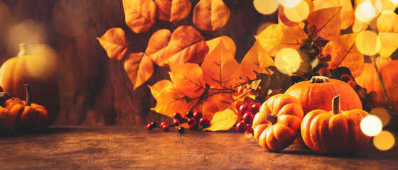 Fototapeta Thanksgiving Pumpkins Still Life On Rustic Wooden Background - Autumn Harvest Festival Concept Table Setting, Banner With Copy Space obraz