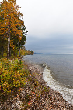 Baikal Lake in September. Due to the rainy summer, the water level in the lake has become high. The beach is flooded and the water approached the coastal forest. Beautiful autumn landscape