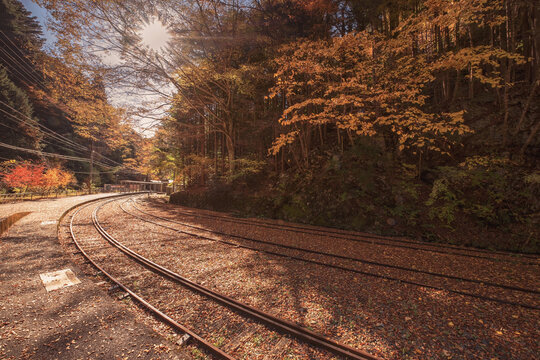 Railway station in autumn color
