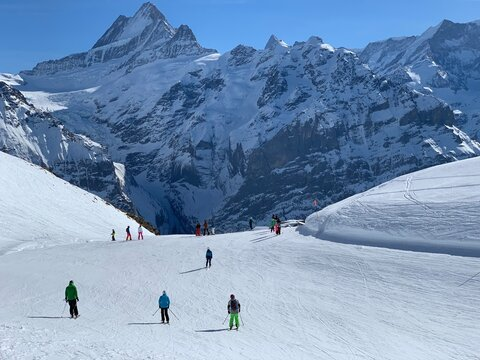 People Skiing On Snowcapped Mountain On Grindelwald