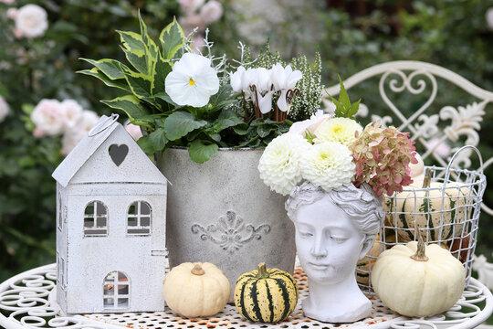 Herbst-Gartendekoration mit weißen Blumen, Kürbissen und Frauenbüste
