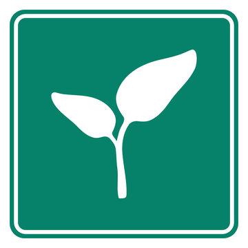 Pflanze und Schild