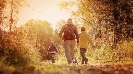 Fototapeta adult men, children and small dog hiking in the forest in september obraz