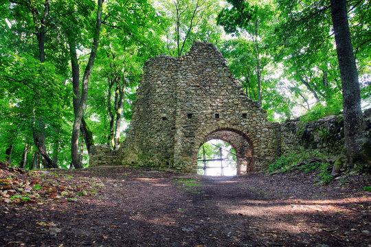 Ruin of castle Muran in Slovakia