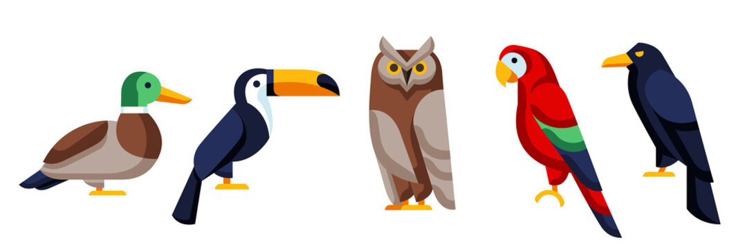 Set of stylized birds. Image of wild birds in simple style.