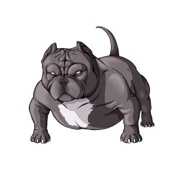 pitbull american bully dog draw