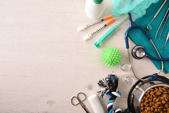 Surgical supplies and dog accessories on table background top view