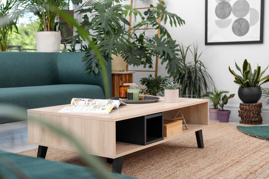 Living room interior with modern furniture and houseplants