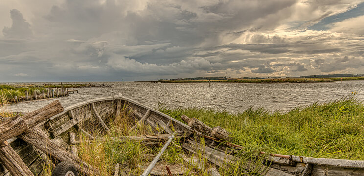a wrecked wooden boat on the shore with grass growing over the railing