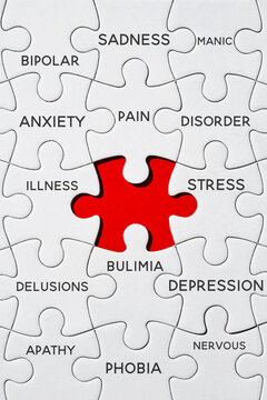 red gap in a puzzle with mental health terms