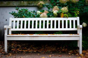 Fototapeta Usiądź na chwilę obraz