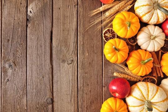 Fall side border of pumpkins, apples and spices. Top view on a rustic dark wood background with copy space.