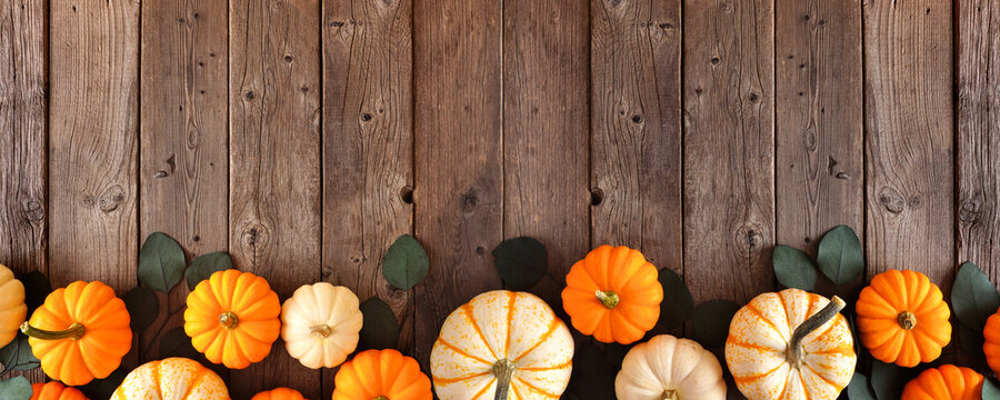 Fall bottom border of pumpkins and eucalyptus leaves against a rustic dark wood banner background. Top view with copy space.