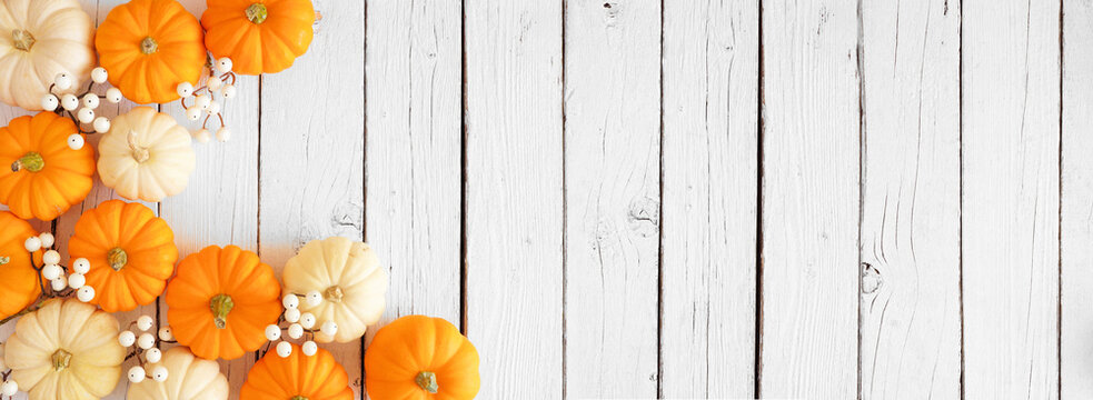 Autumn corner border of orange and white pumpkins and berries on a white wood background. Top down view with copy space.