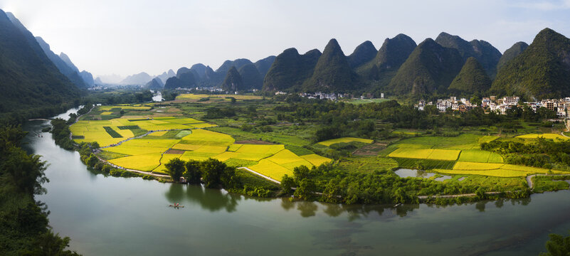 Guilin, yangshuo, landscape with yellow flowers