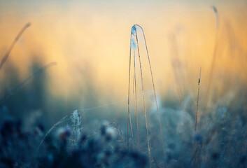 Fototapeta Autumn morning obraz