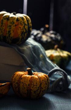 few fresh orange pumpkins on blue background