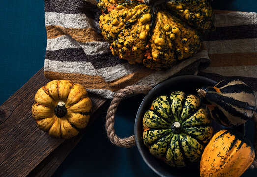 different pumpkins on blue background