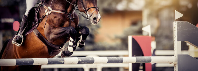 The shod hooves of a horse over an obstacle. The horse overcomes an obstacle. Equestrian sport, jumping. Overcome obstacles.