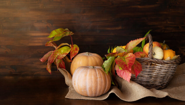 Pumpkins and basket of apples and small decorative pumpkins on wooden table against wooden background