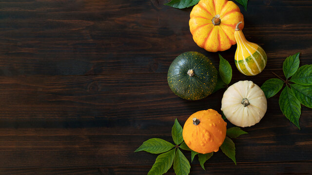 Top view of group of decorative pumpkins on wooden background