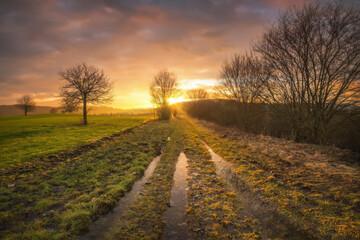 Der Weg nach dem Regen beim Sonnenuntergang, orange Farbe am Himmel, Baum ohne Laub