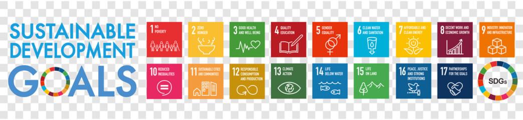 Fototapeta SDGs 17 development goals environment obraz