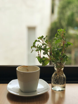 In the morning, a cup of coffee that has been drunk is placed next to the window glass.