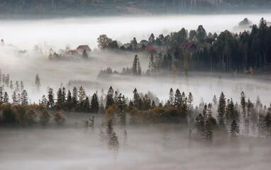 Fototapeta Jesień, mglisty krajobraz obraz